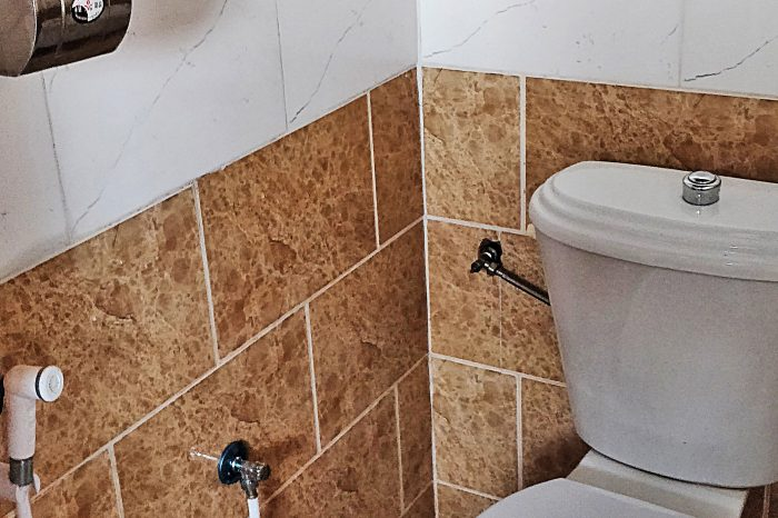 toilet-3-3